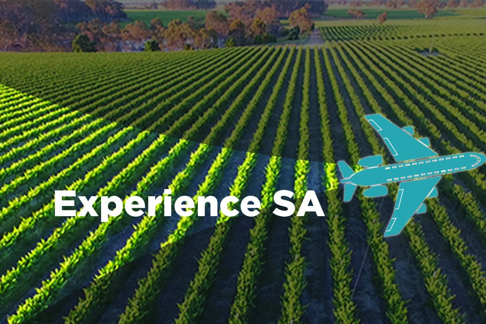 Win The Ultimate Adelaide Experience